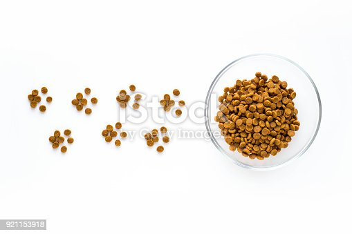 istock Paw sign made of dry cat or dog food with full bowl. 921153918