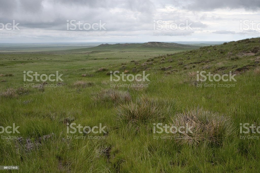 Pawnee National Grasslands, Colorado royalty-free stock photo