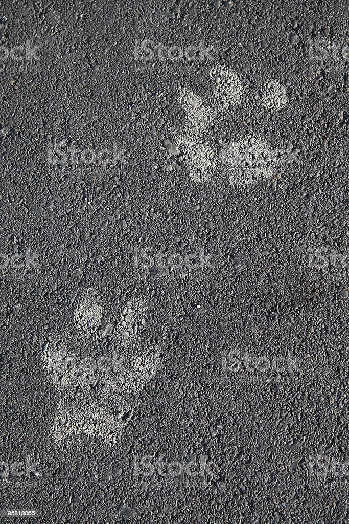 Pawprints royalty-free stock photo