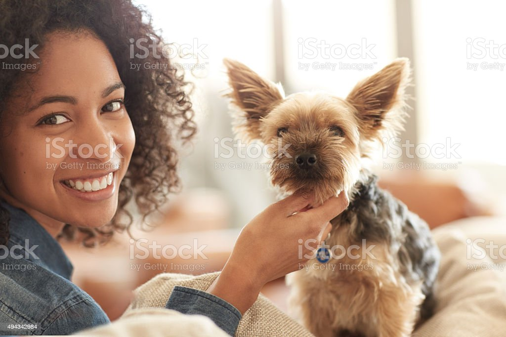 Paws down, he's the cutest stock photo