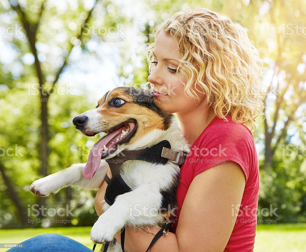 Paws-itively adorable foto de stock royalty-free