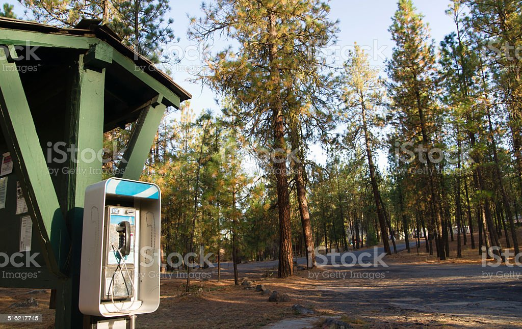 Pay Phone Booth Tone Dial Wooded Campground State Forest stock photo