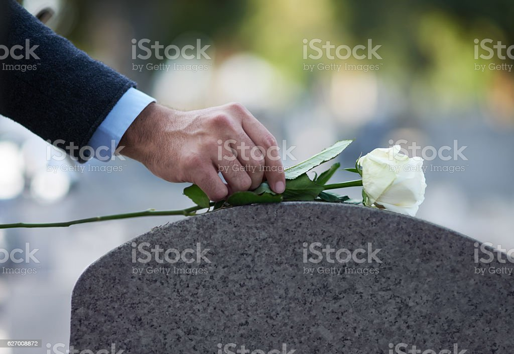 Paying his respects… Cropped shot of a man placing a white rose on a grave Adult Stock Photo