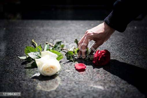 A man puts a red rose on the grave