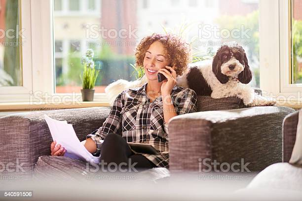 Paying the pet insurance picture id540591506?b=1&k=6&m=540591506&s=612x612&h=2 qblmgwurzhxlppx9yajolknviaygrldryzlazs27o=