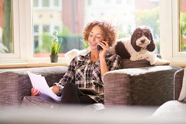 Zahlen der Haustierversicherungen – Foto