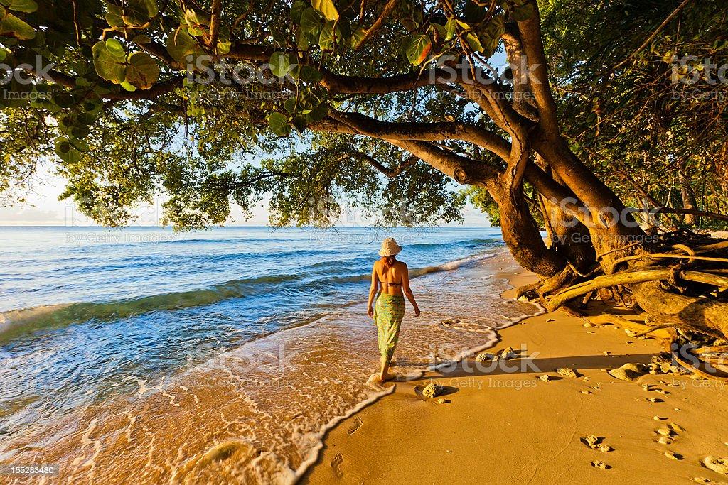 Baía Paynes, Barbados - foto de acervo