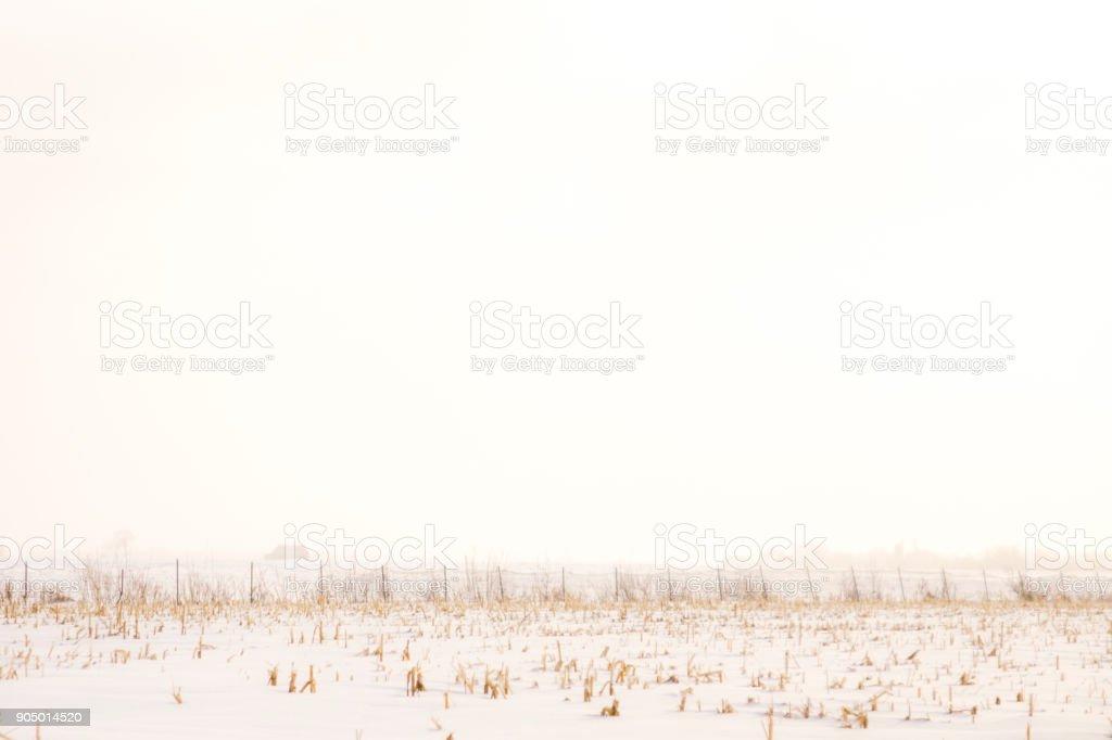 Paysage hivernal - Photo