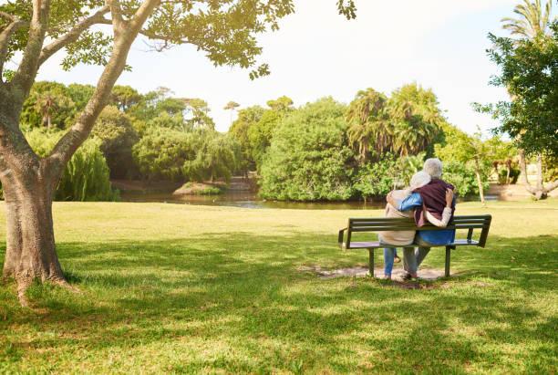 lugn och ro ute i parken - bench bildbanksfoton och bilder