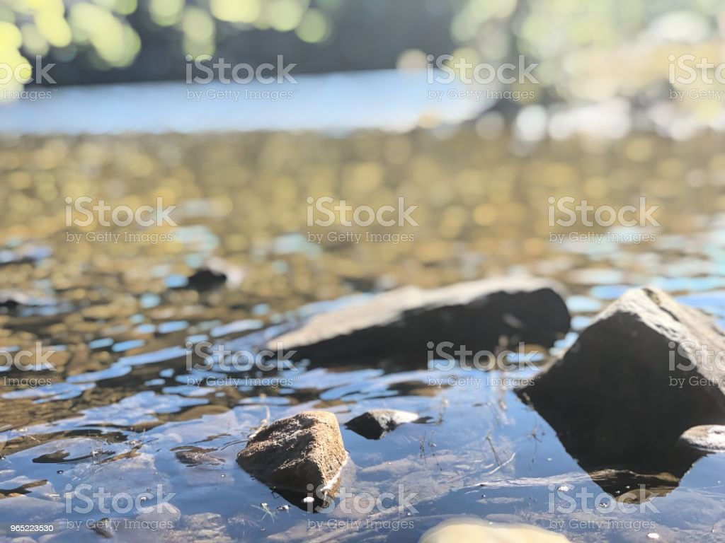 Peace River royalty-free stock photo