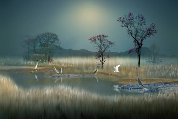 peaceful atmosphere on a dream land stock photo