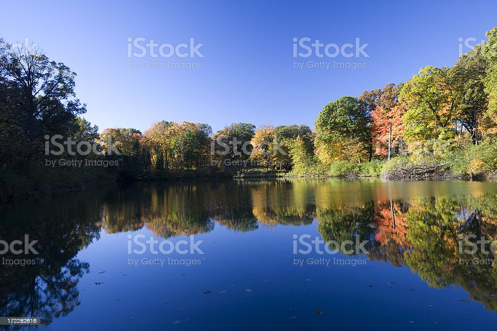 Peaceful Autumn Lake in Illinois stock photo