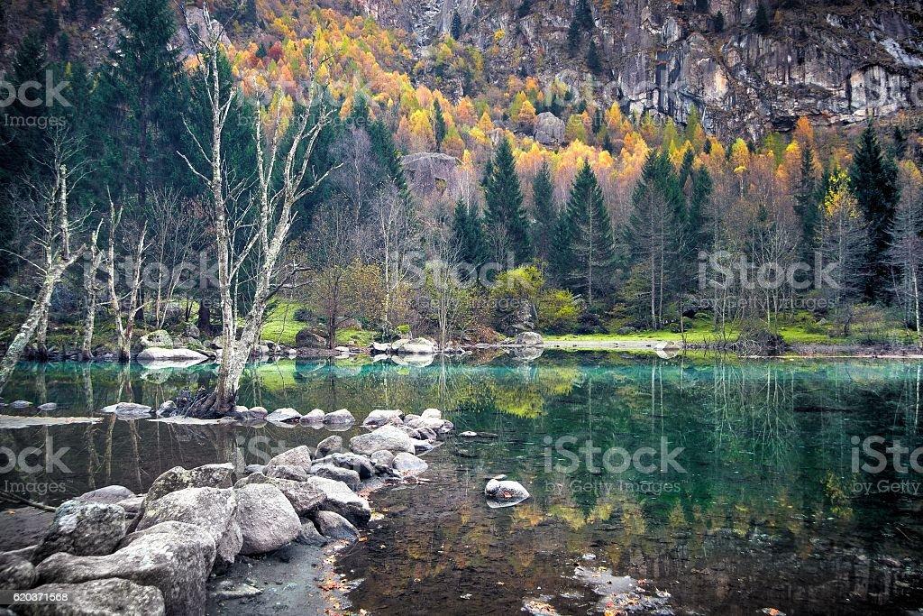 Spokojny Jesień zbiór zdjęć royalty-free