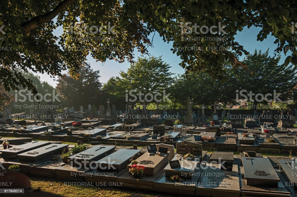 Peaceful cemetery with tombstones and trees at sunset in Tielt. stock photo