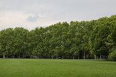 Peaceful classic garden