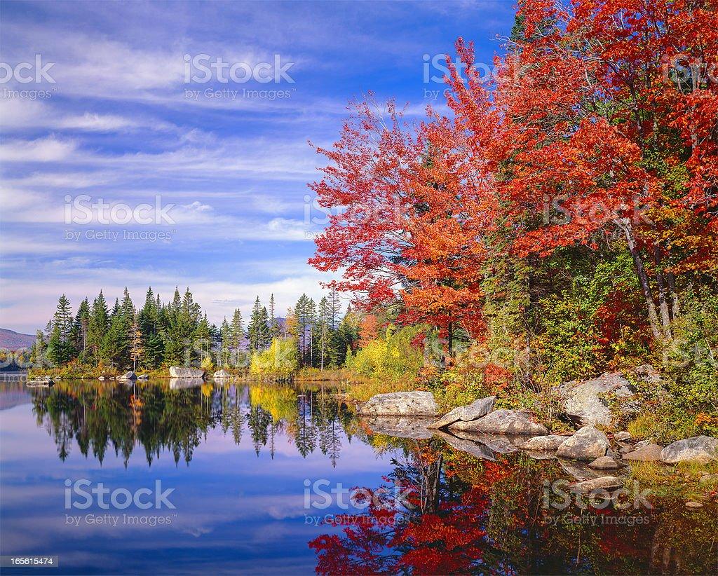 Peaceful colorful autumn fall foliage Jericho lake, New England stock photo
