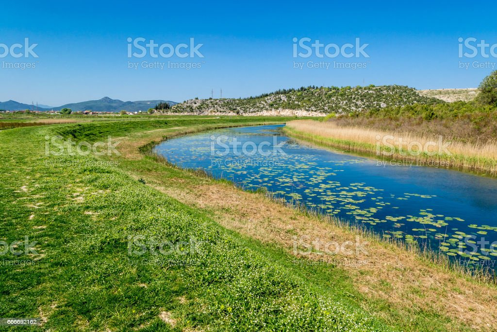 Peaceful creek flowing through the green plains stock photo