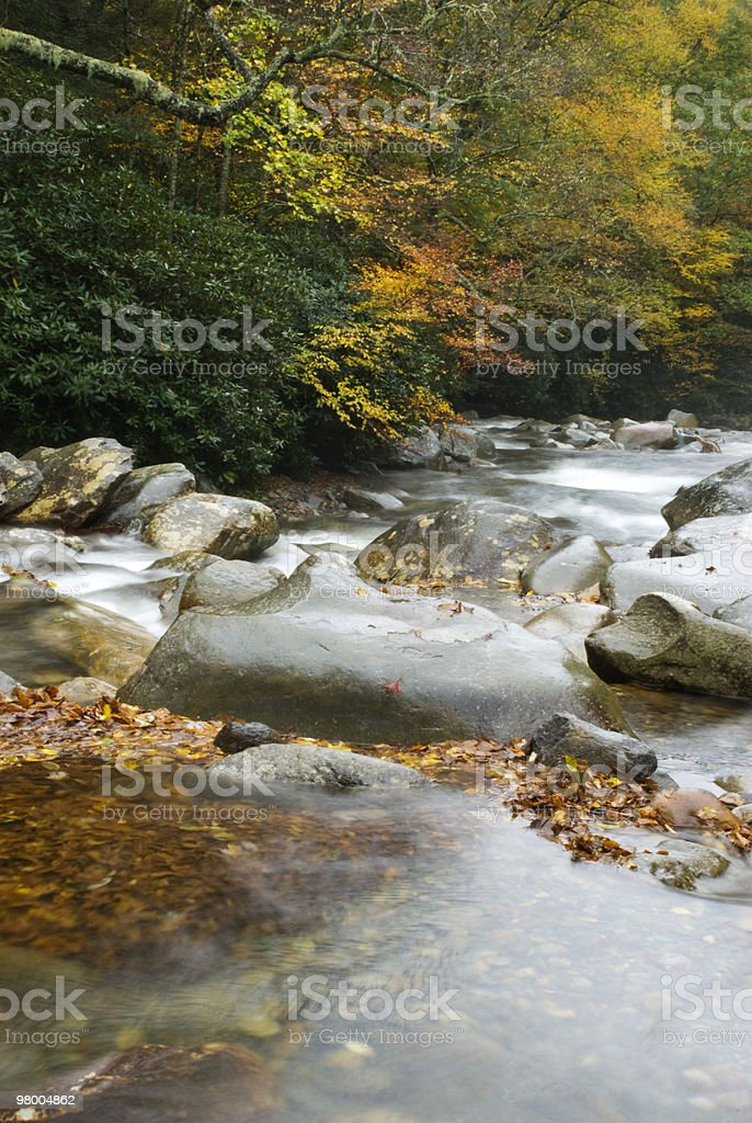 Peaceful Flowing Water In Autumn royalty-free stock photo