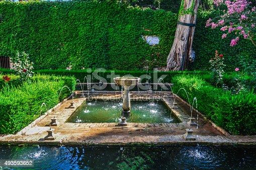istock Peaceful garden in Alhambra 493593652