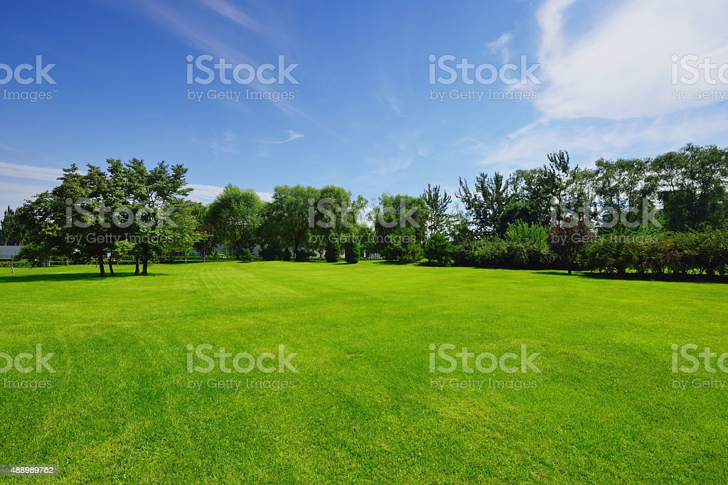 Peaceful garden stock photo