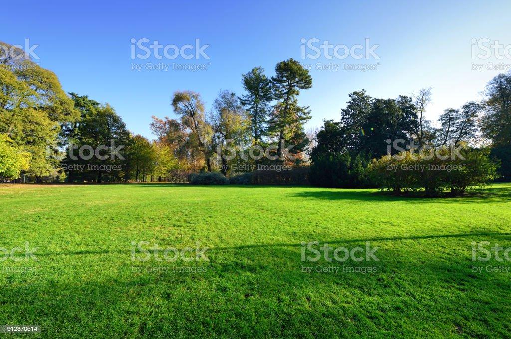 Peaceful Garden stock photo
