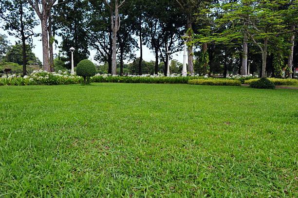 Peaceful Green Garden stock photo
