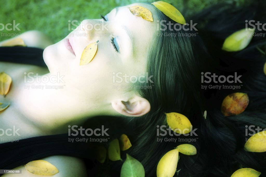 Peaceful Green royalty-free stock photo