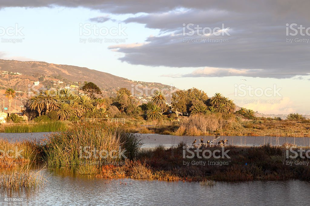 Peaceful Lagoon stock photo