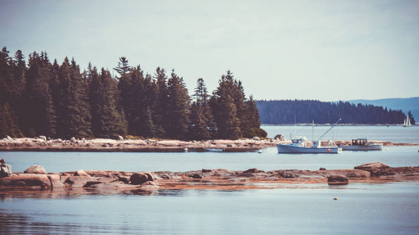 peaceful maine coast and lobster boats - katiedobies stock pictures, royalty-free photos & images