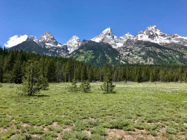 Peaceful Meadow in Front of Teton Mountain Range stock photo