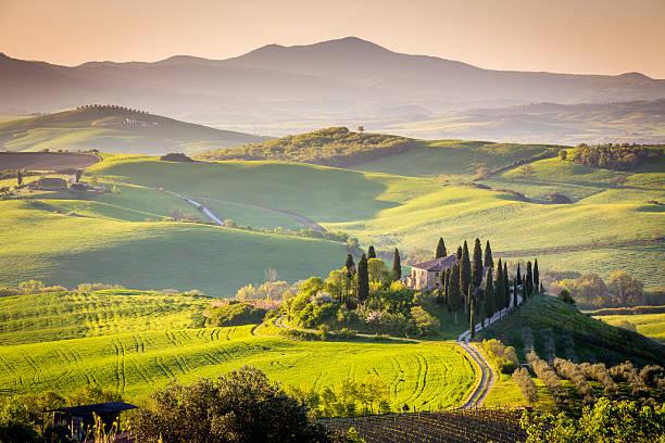 Peaceful morning in Tuscany, Italy stock photo