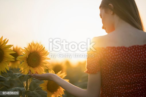 Rear view of a young woman in red dress enjoying with beautiful sunflowers.
