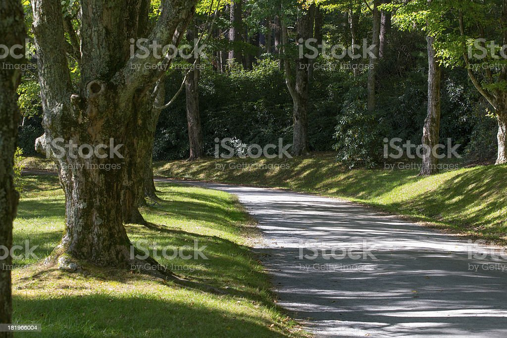 Peaceful Path royalty-free stock photo
