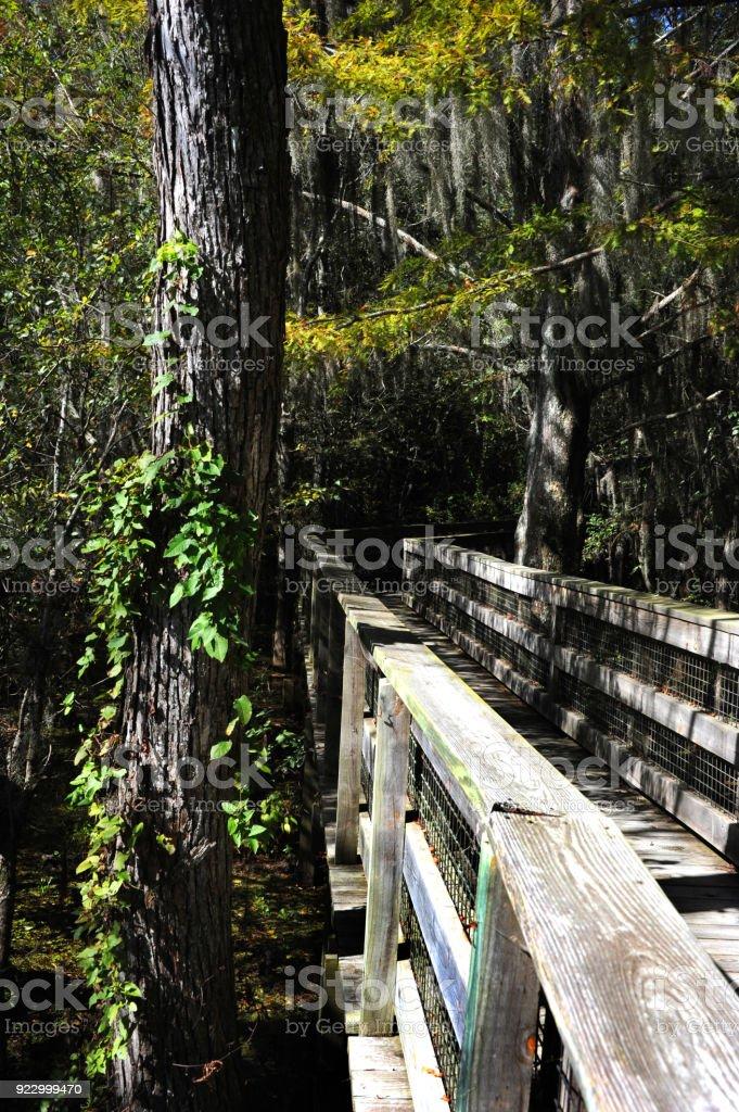Peaceful Refuge stock photo