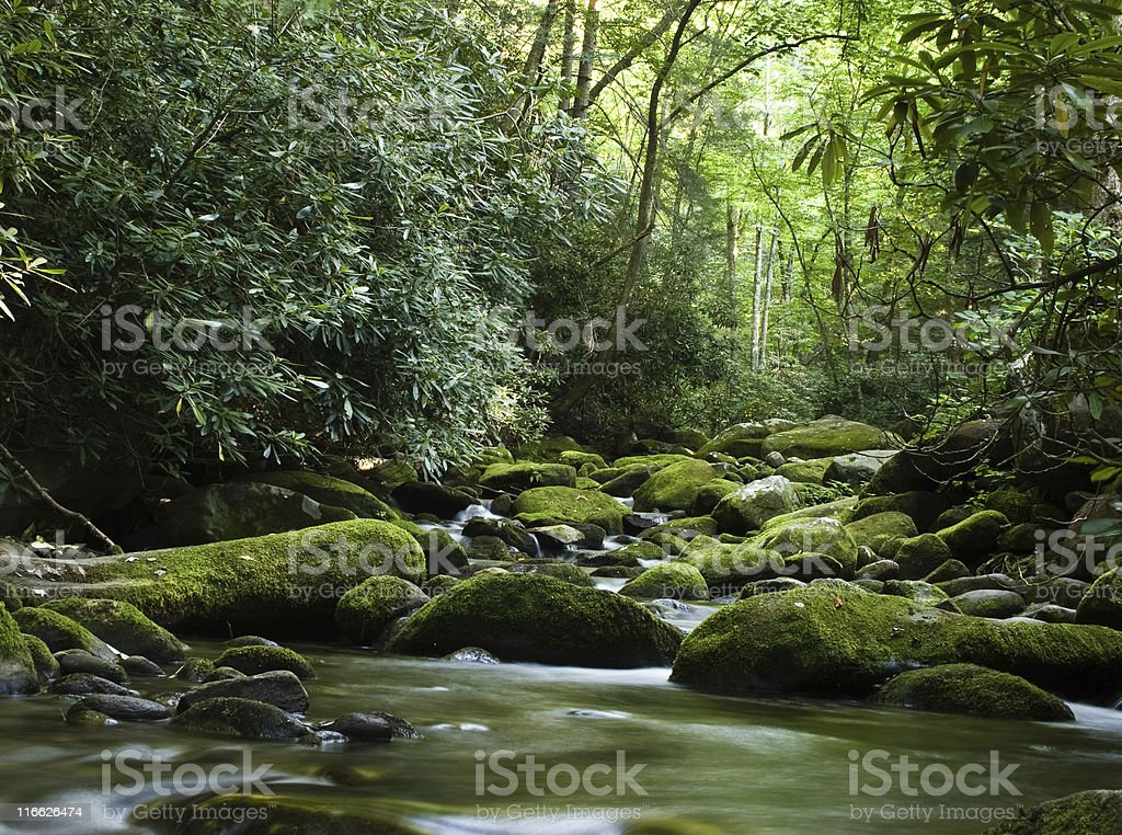 Peaceful river flowing over rocks royalty-free stock photo