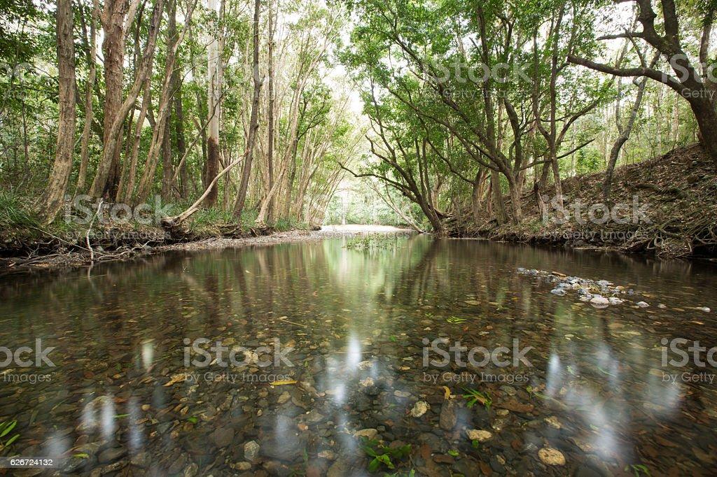 Ruhiger Fluss – Foto