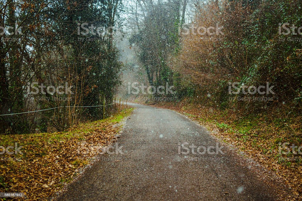 Peaceful road under the snow stock photo