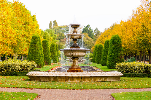Peaceful scenery in the Regent's Park of London