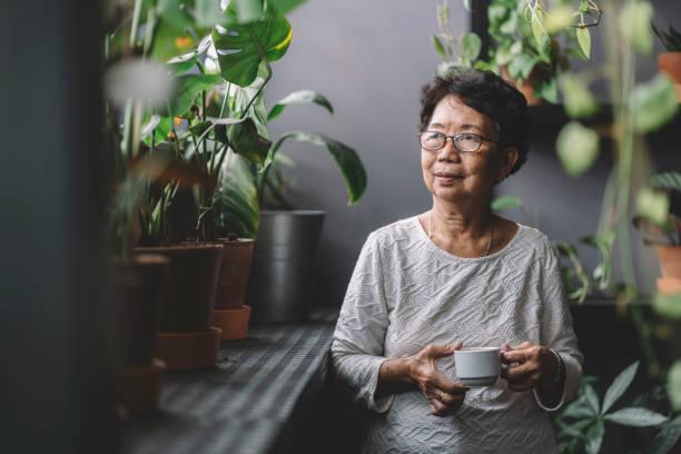 friedliche senior asiatische chinesische frau beim kaffee zu hause chillen - asien stock-fotos und bilder