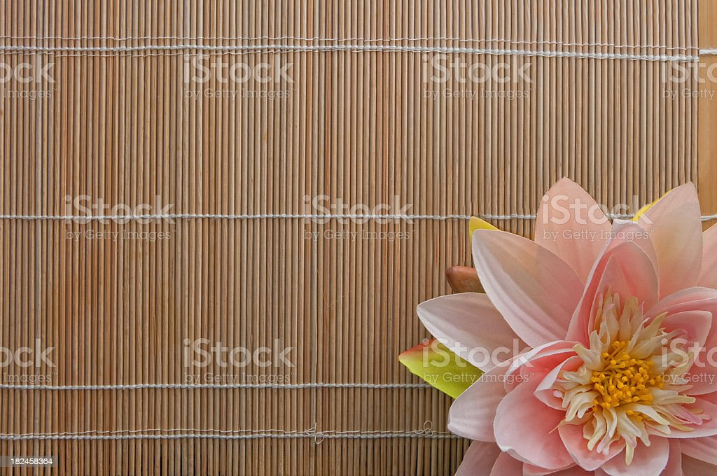 Peaceful Silence, Lotus Flower on the Bamboo with Copyspace royalty-free stock photo