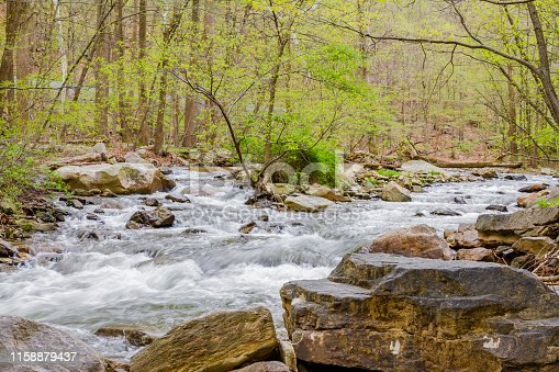 Peaceful flowing stream in woodland setting