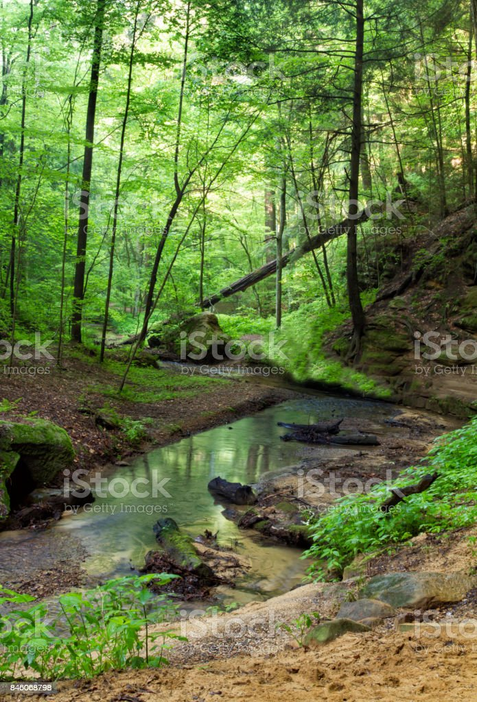 Peaceful Spring Creek with Reflections stock photo