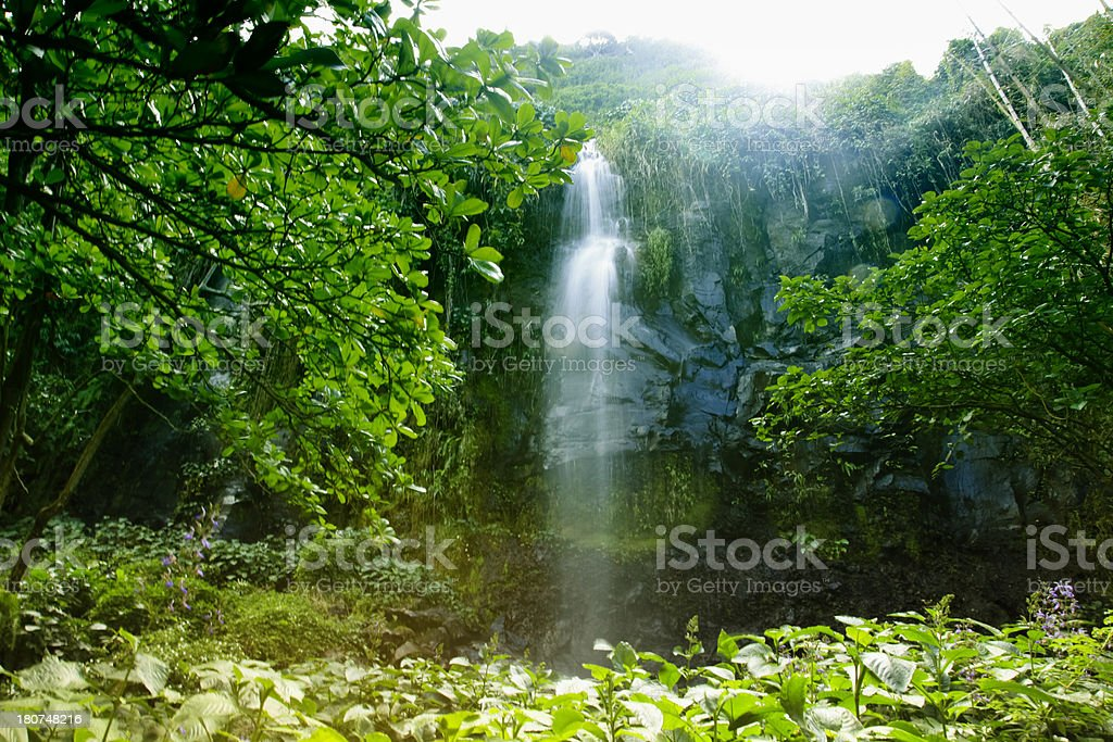 Peaceful Waterfall on Reunion Island, East Africa, Indian Ocean. stock photo