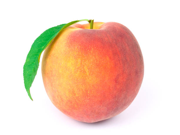 A peach isolated on white background stock photo