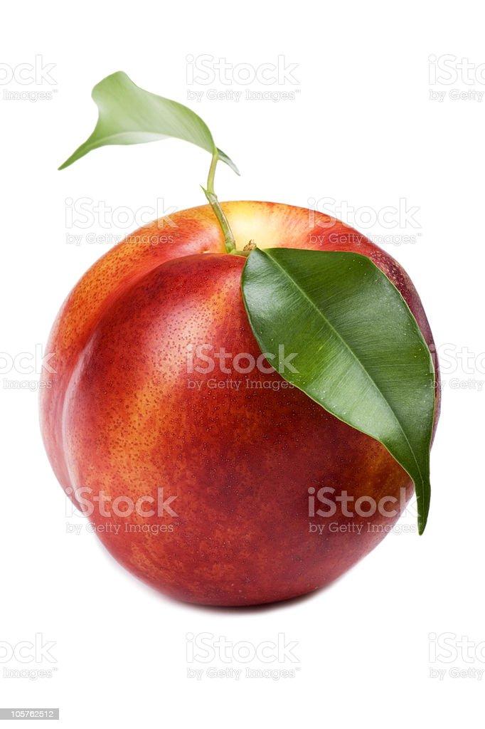 peach on white macro stock photo