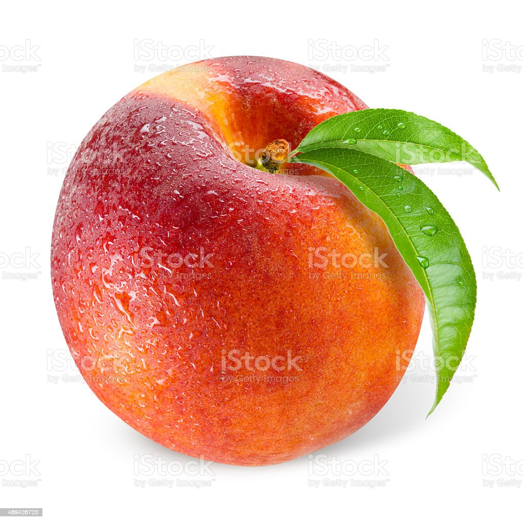 Peach. Wet fruit with leaf isolated on white stock photo
