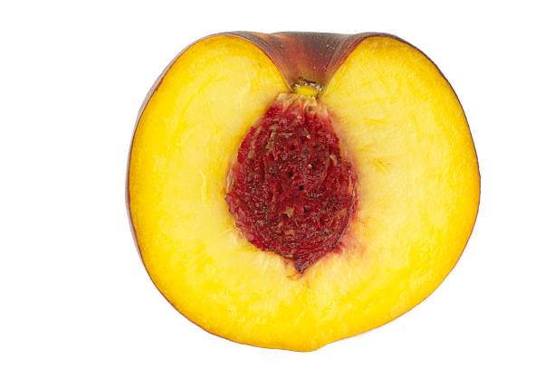Peach with kernel cut through stock photo