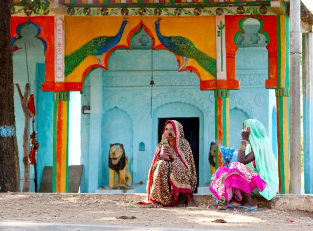 peacock farben, madhya pradesh, indien - pfau bilder stock-fotos und bilder