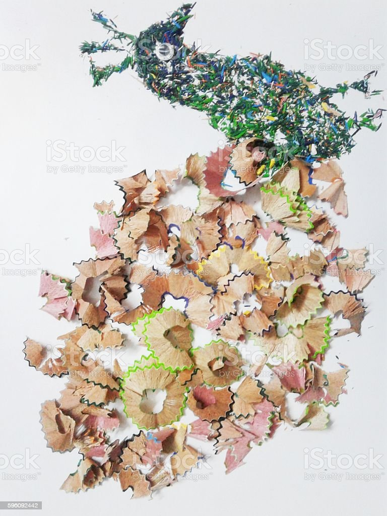 peacock with pencil shavings royalty-free stock photo