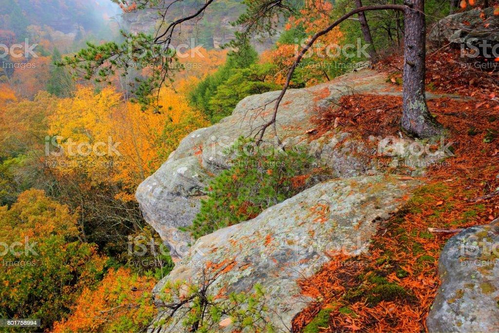 Peak Fall Color in Hocking Hills Ohio stock photo